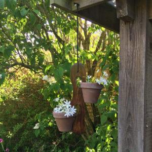 Potteplante holdere